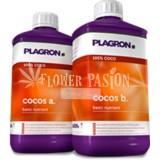 COCOS A&b plagron