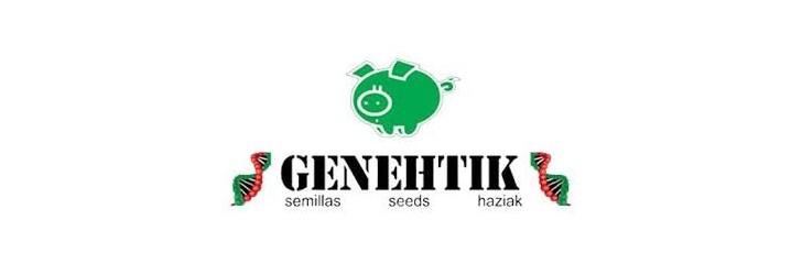 GENETHIK AUTO