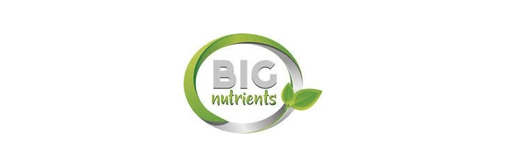 BIG NUTRIENTS